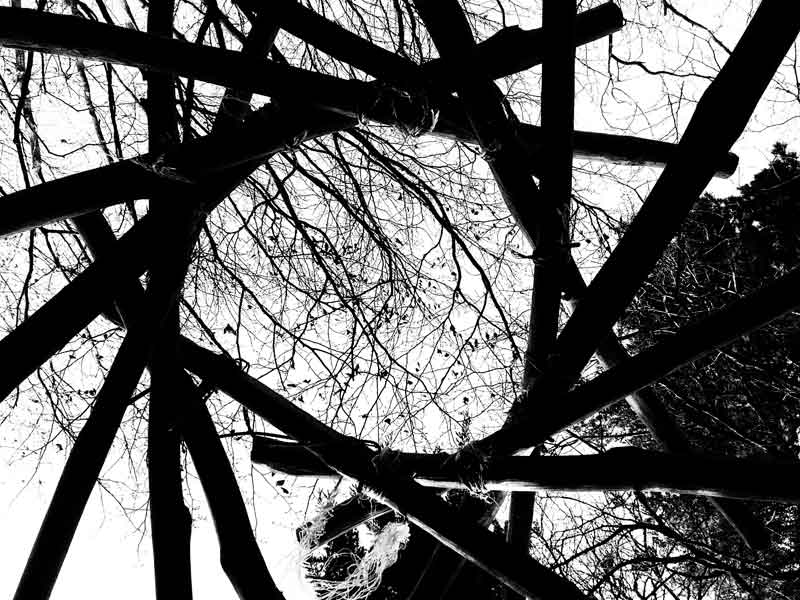 L'Isolette (ZAD NDDL, 2015)