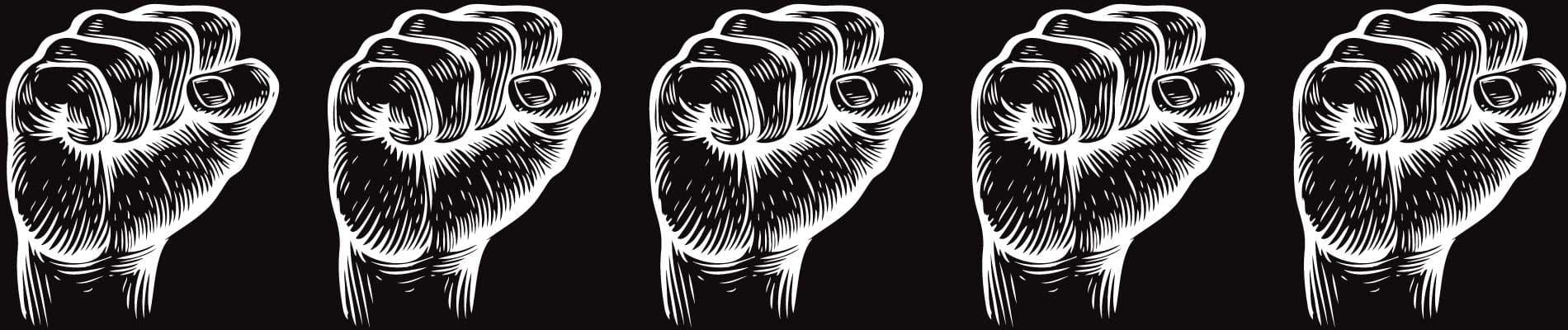 riot fist