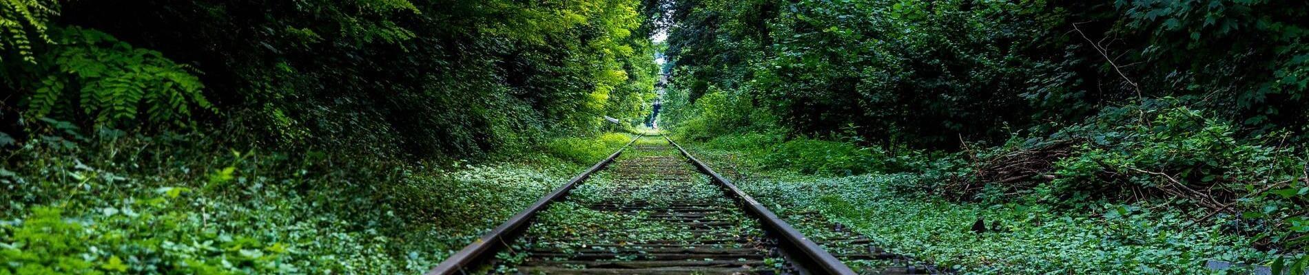 Chemins de fer Français